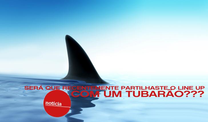 1516Será que partilhaste o line up com um tubarão recentemente?