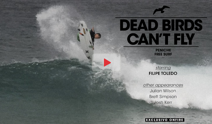 13678Dead birds can´t fly | Peniche free surf || 1:40