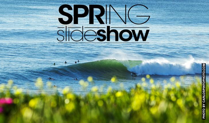 17636Slideshow | Spring || 36 Photos