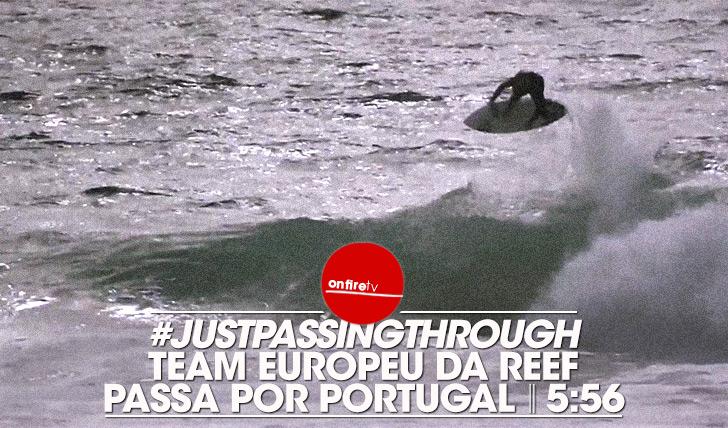 20289Team europeu da REEF passa por Portugal