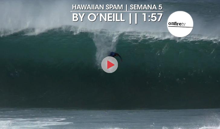 22347Hawaiian Spam by O'Neill | Semana 5 || 1:57