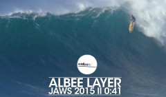 ALBEE-LAYER-JAWS