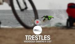 WIGGOLLY-DANTAS-LOWER-TRESTLES