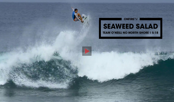 29716Seaweed Salad | O team O'Neill no North-Shore || 5:18