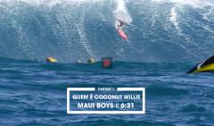 QUEM-E-COCONUT-WILLIE