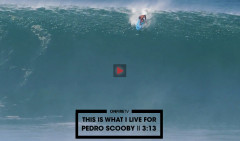 THIS-IS-WHAT-I-LIVE-FOR-PEDRO-SCOOBY