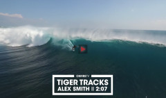ALEX-SMITH-TIGER-TRACKS-G-LAND
