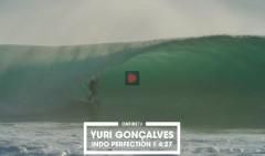 YURI-GONCALVES-STILL-ALIVE