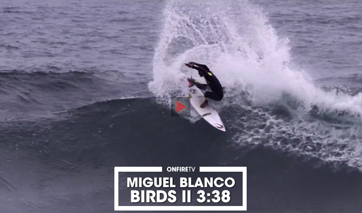 37666Miguel Blanco | Birds || 3:38