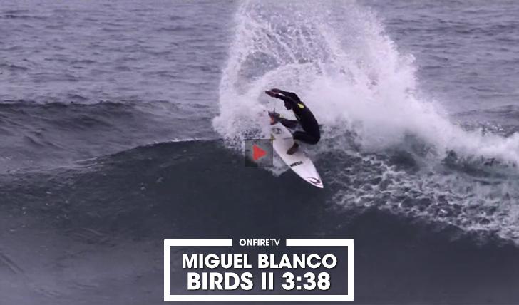 37666Miguel Blanco | Birds || 3:38
