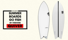 SUMMER-BOARDS-QUIVER-FIREWIRE