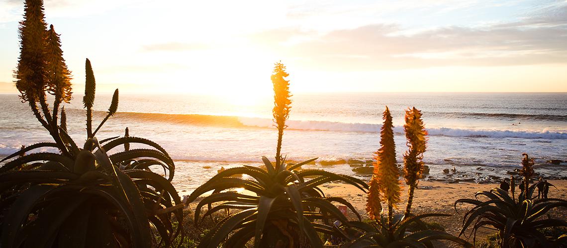 387426 ondas de Frederico Morais em Jeffreys Bay || 1:46