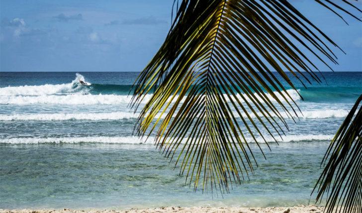 43503Tomás Fernandes e Miguel Blanco eliminados no Barbados Surf Pro