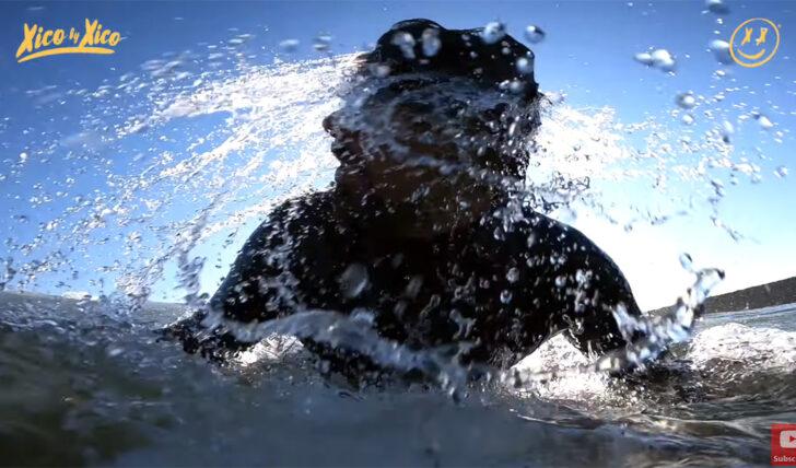 58982Xico by Xico | Free surf antes do confinamento || 11:41